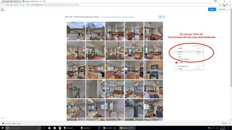 How to Download Photos from Dropbox   Wild Dog Digital